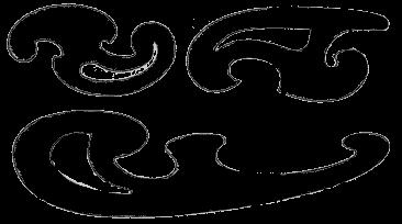 16795930-ShXuM.jpg