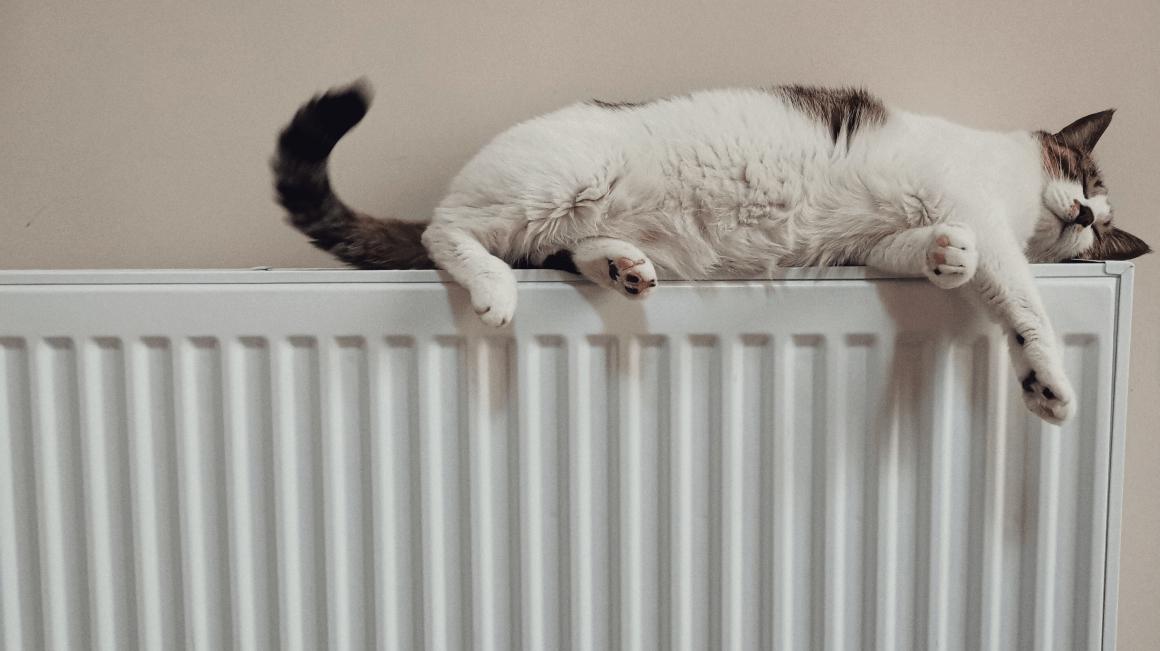 radiateurs-gallery