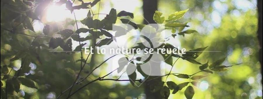 Le-Jardin-De-Catherine – outillage de jardin en promo – Dealabs