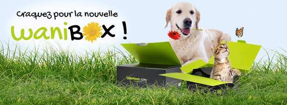 wanimo – la box wanibox pour chien et chat – Dealabs