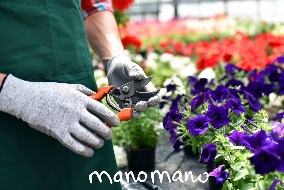 Manomano – bricolage, outils et jardinage pas cher – Dealabs