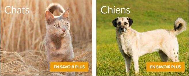 medicanimal – nourriture et médicaments pour chats et chiens – Dealabs