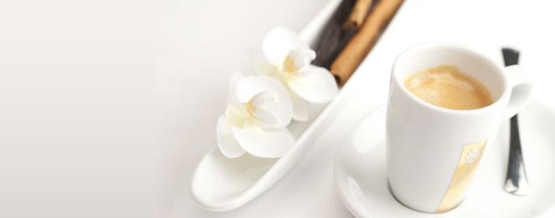 Malongo – café en dosettes pas cher – Dealabs