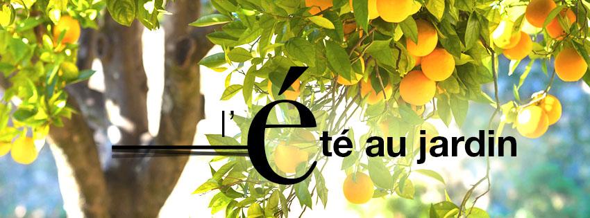 truffaut – jardin, plantes, animaux – Dealabs