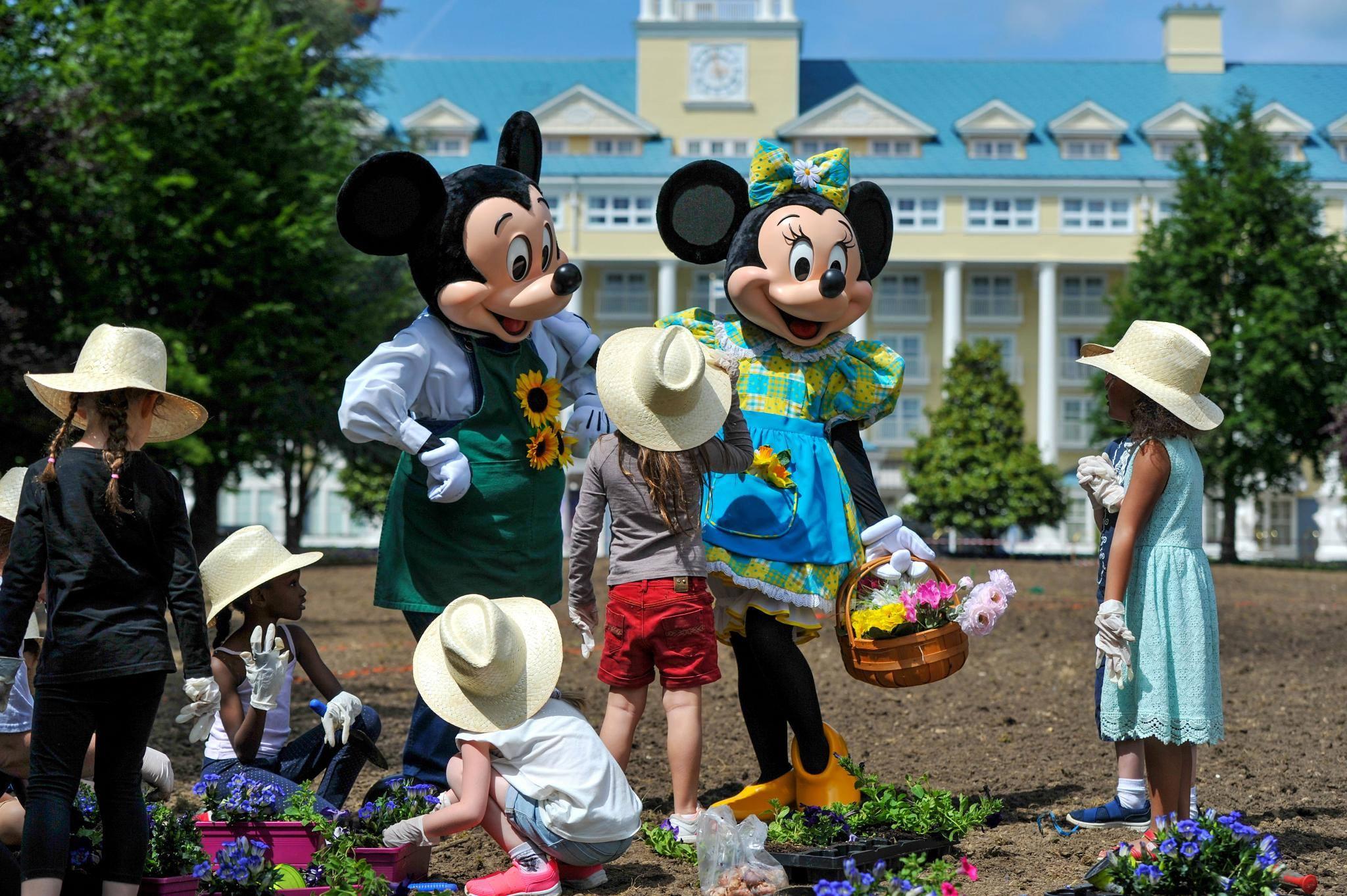 Disneyland-Paris – billets pas cher – Dealabs
