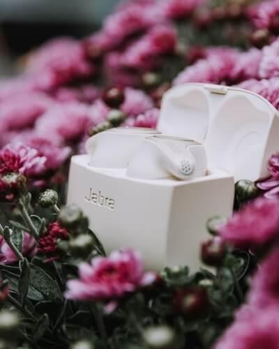 Un boitier blanc avec ses écouteurs dans un champ de fleurs roses