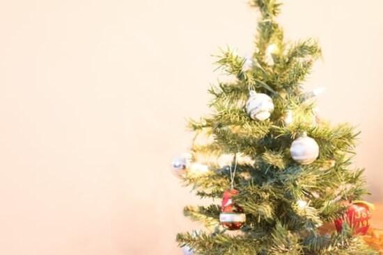 Bon Plan Ou Code Promo Sapins De Noël Offres Sur Dealabs