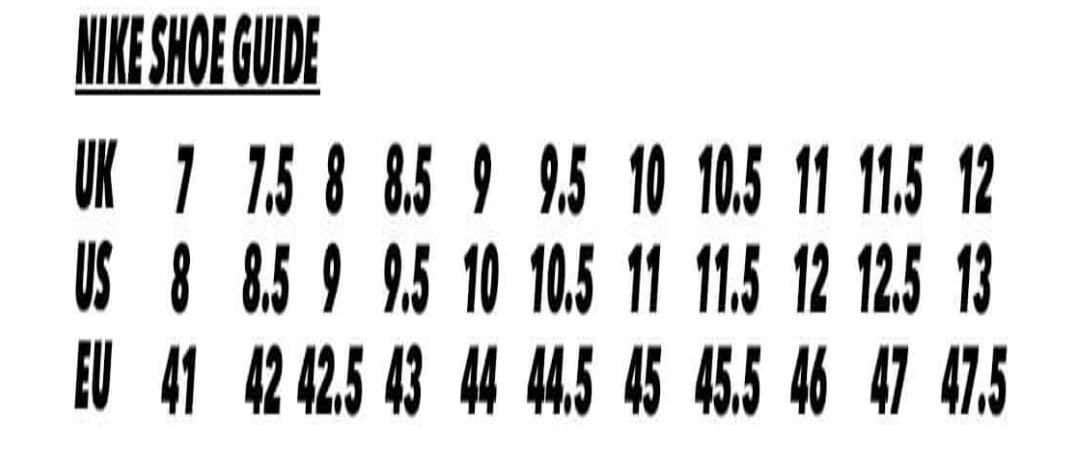 1305341.jpg