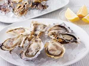 Lot de 2 bourriches de 12 huîtres creuses - n°4, origine Bretagne ou Normandie