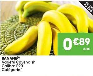 Bananes variété Cavendish - le kg