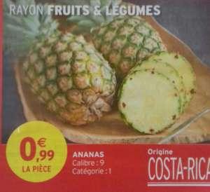 Ananas Calibre 9 Catégorie 1 (Origine Costa Rica) - Villefranche-de-Lauragais (31)