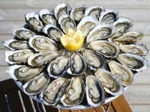 Dégustation gratuite d'huîtres d'Oléron - Chatou (78)