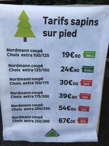 Sélection de sapins 100% remboursés en bon d'achat - Ex : Nordmann coupé 100/125 (Angers/St Barthélémy 49)