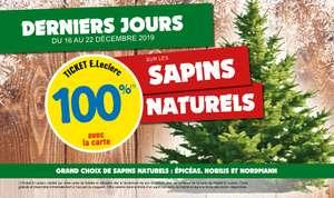 Sapin de Noël naturel gratuit - 100% remboursé sur la carte de fidélité - Saint-Nicolas-de-Redon (44)