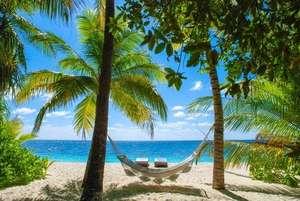 Séjour 6 nuits aux Maldives au Palm Rest 3* avec vol A/R bagage soute inclus depuis Paris du 10 au 16 novembre 2020 (prix par personne)