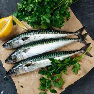 Sardines (Origine Méditerranée ou Atlantique nord-est) - 1 kg