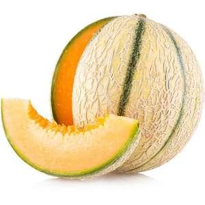 Melon Charentais - la pièce (Origine France)
