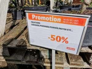 50% de réduction sur les arbres fruitiers - Saran (45)