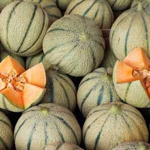Lot de 3 melons charentais jaune - Catégorie 1, Origine France