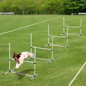 Set de 4 obstacles Agility sport pour chiens