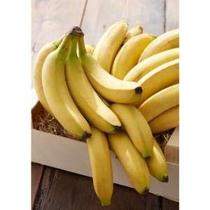 Bananes cavendish (Catégorie 1 Origine Afrique, Amérique Centrale ou Antilles françaises) - 1Kg