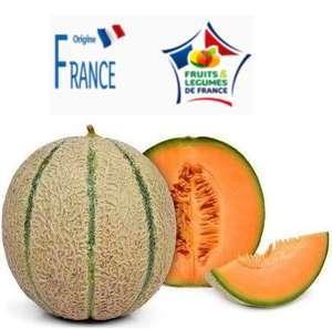 Lot de 2 melons variétés charentais - Origine France, Catégorie 1