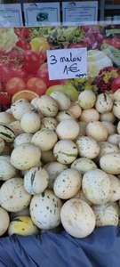 Lot de 3 Melons Snowball - Safa & Marwa - Chanteloup les Vignes (78)