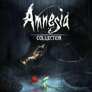 Jeu Amnesia Collection sur Switch (Dématérialisé)