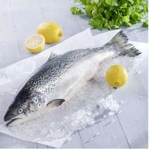 Saumon entier - 1 à 4 Kg, prix au kilo