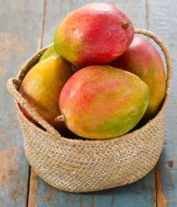 Lot de 2 Mangues Affinées - Catégorie 1, Origine Espagne ou Brésil