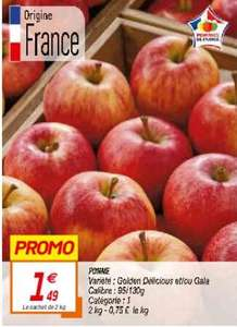 Pommes variétés Golden Delicious et/ou Gala - Cat.1, Origine France, Filet de 2 kg