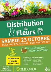 [Habitants] Distribution gratuite de fleurs vivaces ou bisanuelles - Triel-sur-Seine (78)