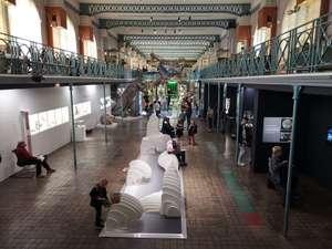 Entrée Gratuite au Musée d'Histoire Naturelle de Lille (59)