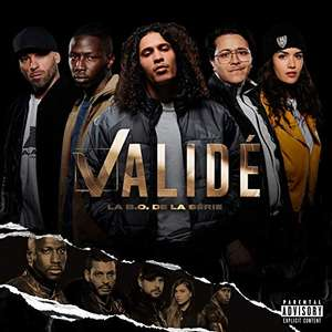 Double Vinyle Bande originale de la série Validé