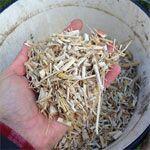 Distribution gratuite de broyat/Mulch et Composteurs, Lombricomposteurs gratuit à Ivry (94)