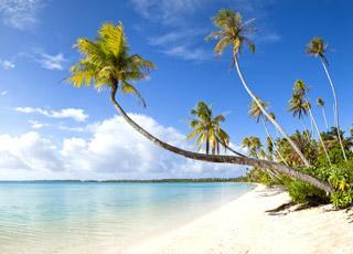 Croisière 5* 23 jours pension complète, départ de Paris (vol inclus) : Martinique, Guadeloupe, Barbade... total 14 pays ou iles
