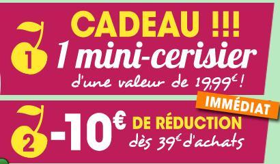 1 Mini cerisier offert + livraison offerte + 10€ de réduction des 39€