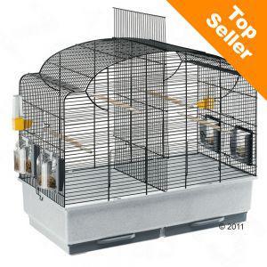 Cage pour perruche Canto (L 71 x l 38 x H 60 cm) + Laisse pour chien ou 5% de réduction ou 200 points fidélité
