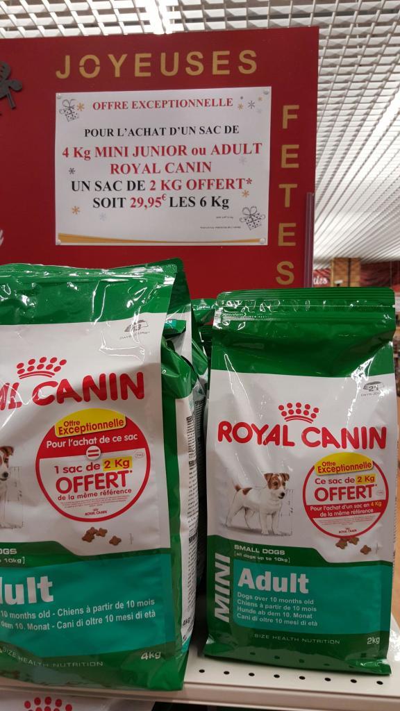 Croquettes pour chien Royal canin Mini - 6 Kg