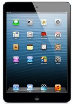 Apple iPad Mini Wi-Fi 16 Go reconditionné