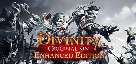 Divinity : Original Sin - Enhanced Edition