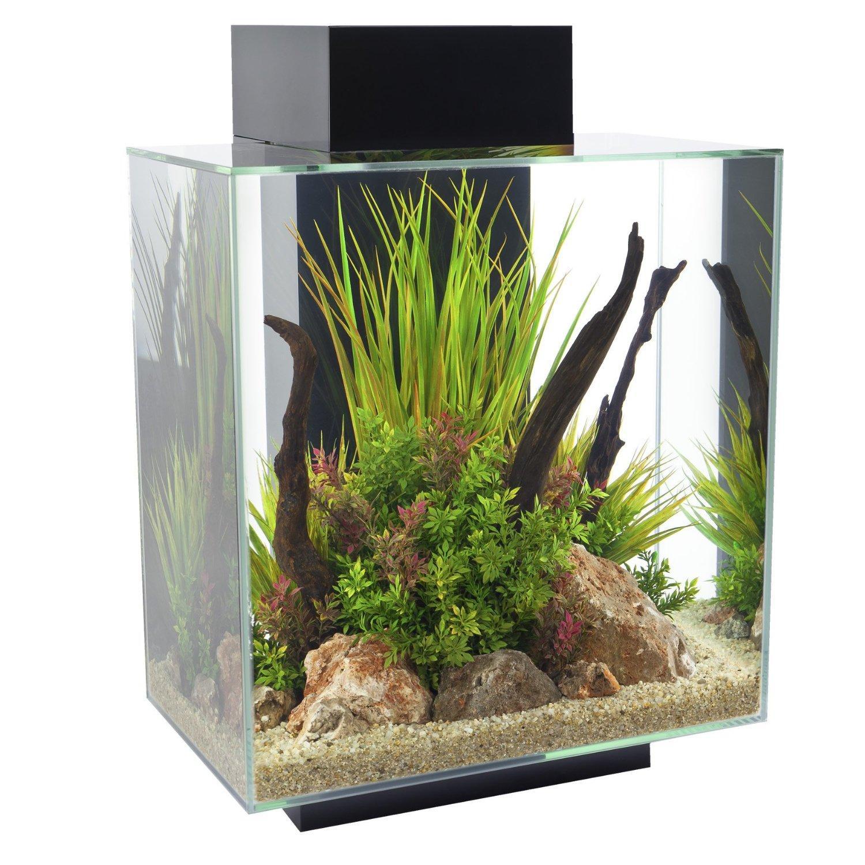 Aquarium Fluvial Edge - 46L, Glossy Noir