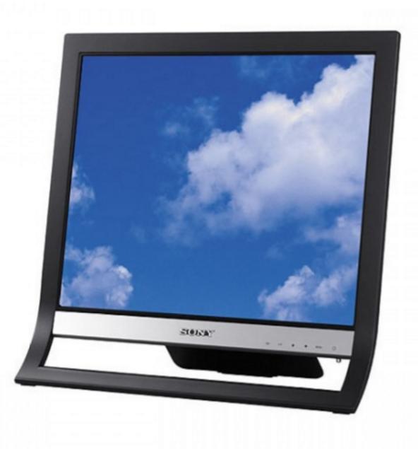 "Ecran 19"" Sony SDM HS95 - 1280x1024, Reconditionné"