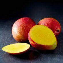 Fruit Mangue - Catégorie 1