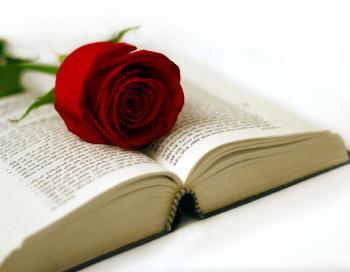 Une rose et un livre gratuit