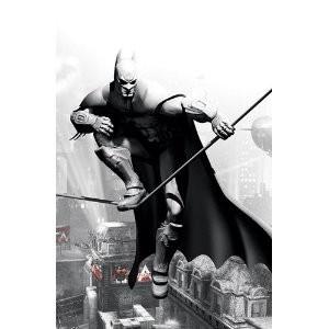 Comic book Batman Arkham City + jeu vidéo sur PC