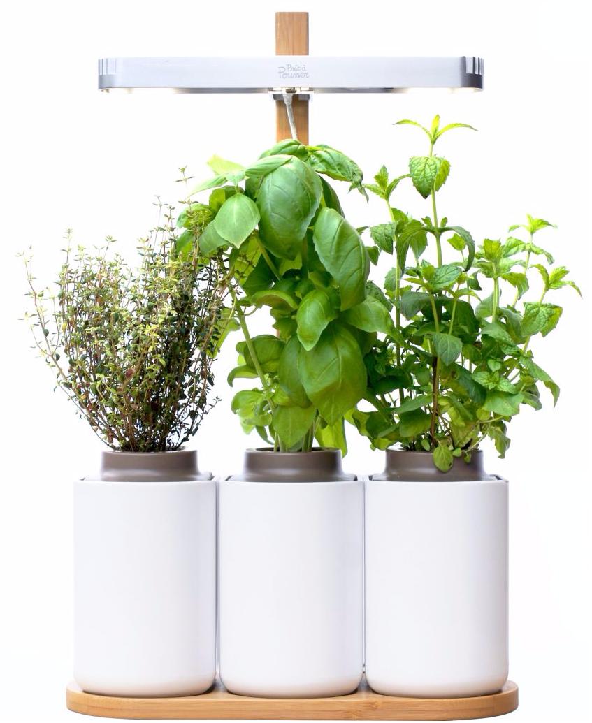 jardin connect d 39 int rieur pr t pousser lilo 1. Black Bedroom Furniture Sets. Home Design Ideas