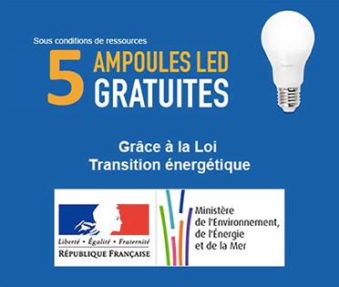 Distribution gratuite de 5 ampoules led tout public chu bordeaux 33 - Ampoules led gratuites gouvernement ...