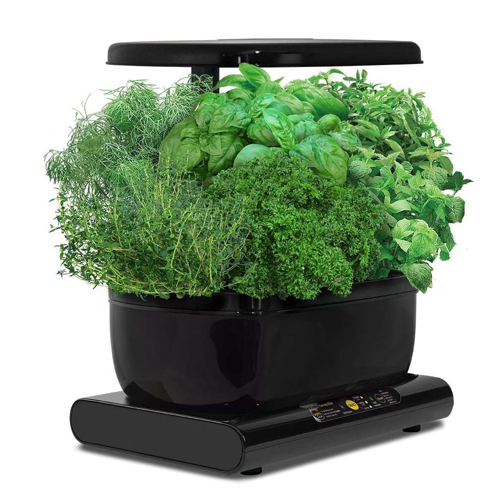 kit de culture hydroponique miracle gro aerogarden harvest avec capsules de graines d herbes. Black Bedroom Furniture Sets. Home Design Ideas