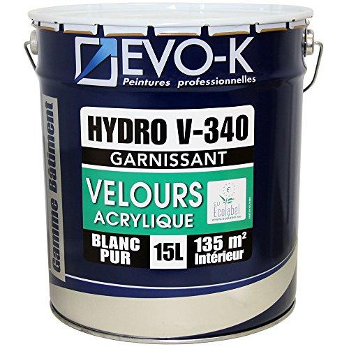 Peinture Professionnelle Murs Plafonds Evo K Hydro V340
